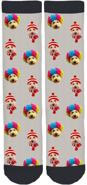 Baja Animal Sanctuary Crew Socks