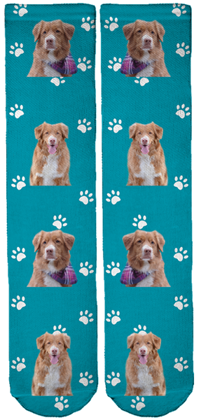 Limited Edition Mocha the Toller Crew Socks