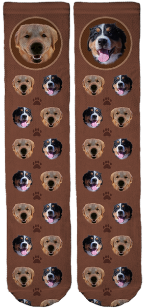 @Dog.of.the.day Limited Edition Socks
