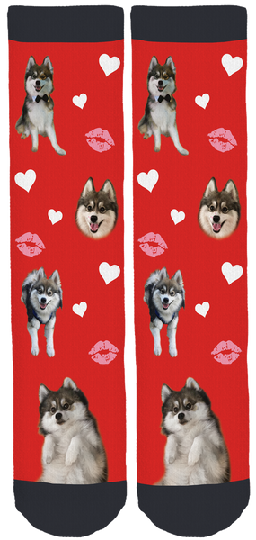 Norman The Pomsky Valentines Crew Socks