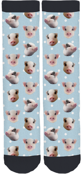 Paddington The Pig Crew Socks
