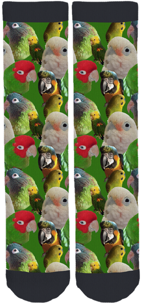 Capital Region Parrot Society Crew Socks