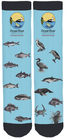 Ocean River Institute Crew Socks