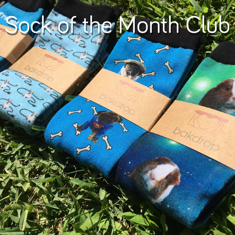 Sock of the Month Club Thanksgiving Sale