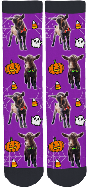 Riley Farm Rescue Halloween Socks