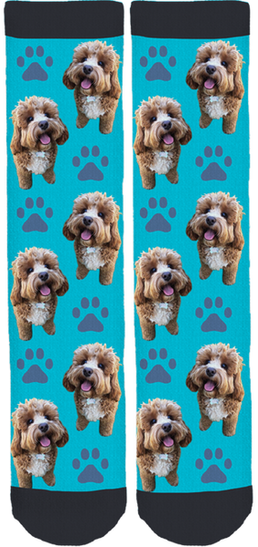 Oliver the Cavoodle Crew Socks