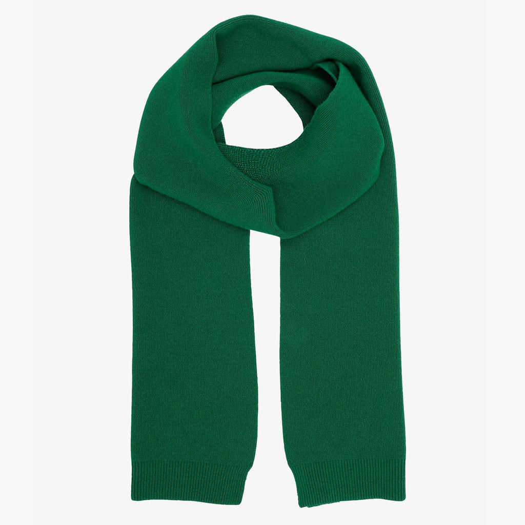 Colorful Standard Merino Scarf in Kelly Green