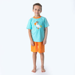25S20 Applique Pelican Boy's Short Set