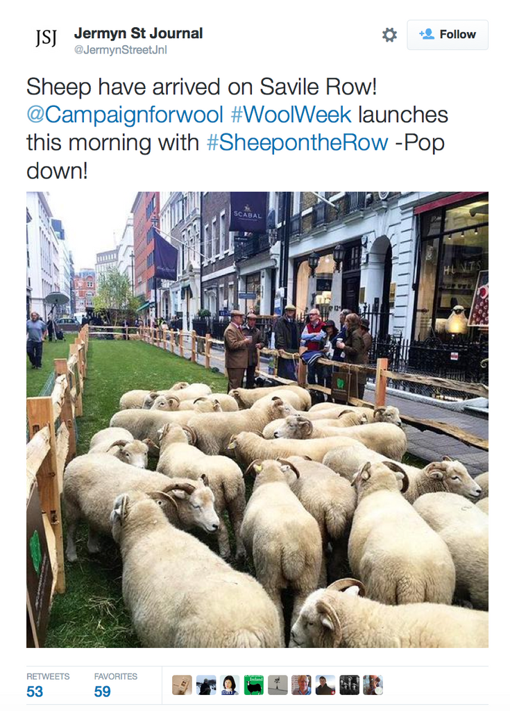 Campaign for Real Wool 2015