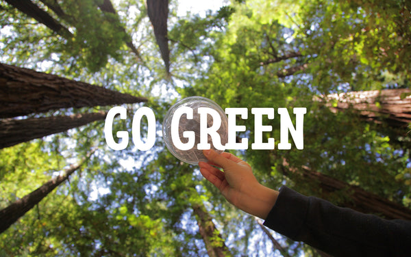 5 Eco Friendly Products To Reduce Your Environmental Impact (& Save $$$)