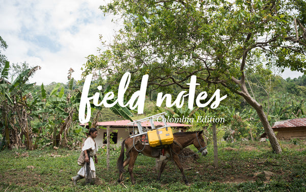 Field Notes: Up Into The Andes