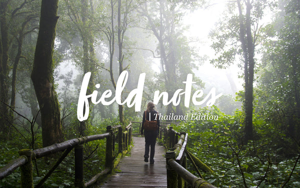 Field Notes: Finding Purpose in the Journey