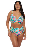 Aloha Plunge Bikini Top - Sheer Essentials Lingerie & Swim