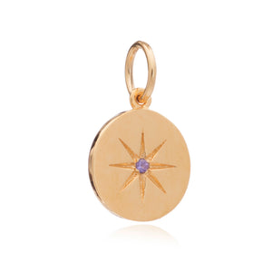 February Birth Star Charm - Gold