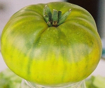 Tomatoes, Evergreen (Heirloom)