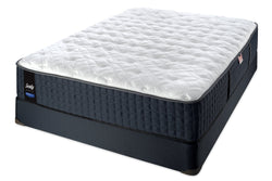 Sealy Pistache Proback Lux Tight Top Plush Mattress Set
