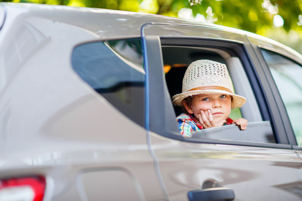 Two Car Accessories To Entertain Your Kids While Traveling