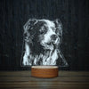 Border Collie Dreaming-3D Lamp-Lamplanet