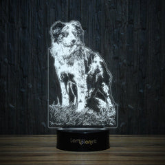 Border Collie on Grass-3D Lamp-Lamplanet