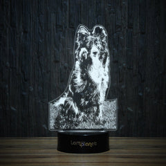 Border Collie Paw-3D Lamp-Lamplanet