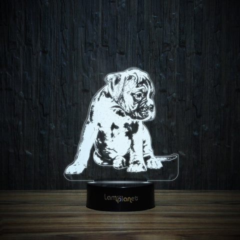 Boxer Puppy-3D Lamp-Lamplanet