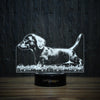 Dachshund Puppy On Grass-3D Lamp-Lamplanet