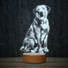Happy Labrador-3D Lamp-Lamplanet