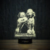 Happy Poodle On Grass-3D Lamp-Lamplanet