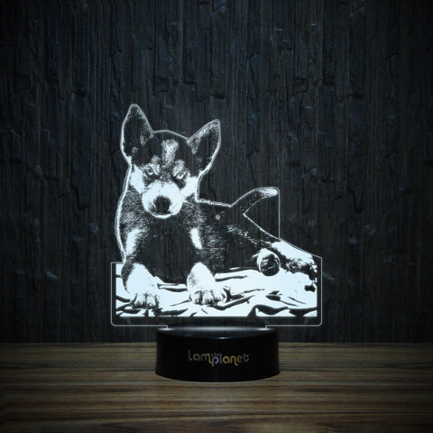 Husky Puppy-3D Lamp-Lamplanet