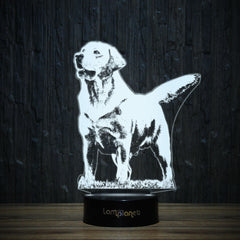 Labrador On Grass-3D Lamp-Lamplanet