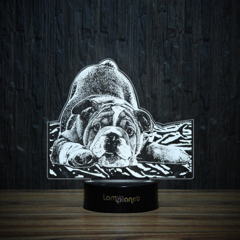 Playful Young Bulldog-3D Lamp-Lamplanet