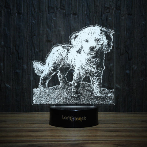 Poodle Puppy On Grass-3D Lamp-Lamplanet