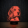 The Beagle-3D Lamp-Lamplanet