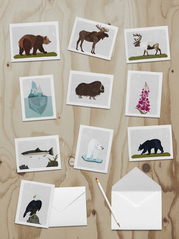 Alaska Wildlife Note Cards 10pk Box Set
