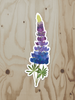 Lupine - Vinyl Sticker