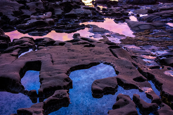 Tide Pools Out of this World