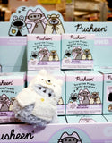 Pusheen blind box warm and cozy series 14