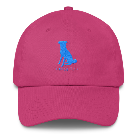 The Bright Pink Curved Chugg Cap