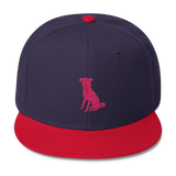 The Red/Navy Chugg Snapback