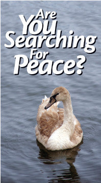 Are You Searching for Peace?