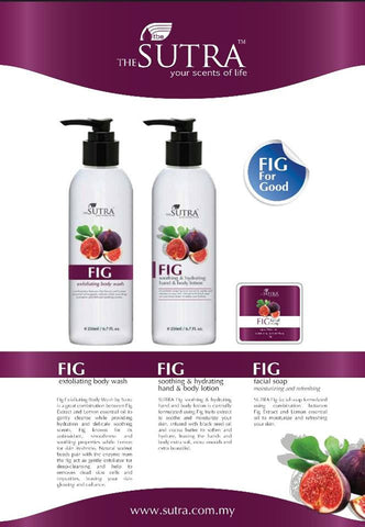 SUTRA FIG Soothing and Hydrating Hand and Body Lotion - SUTRA Wellness