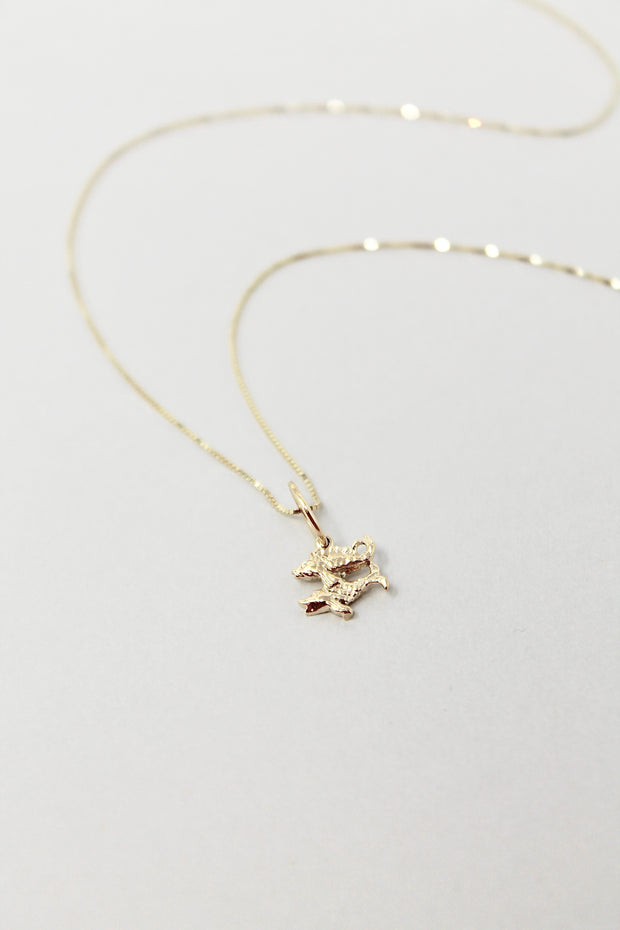 Star Sign Necklace | Pisces