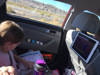 Road trip planner: helpful tips for any road trip