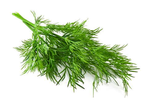Dill - Infused Olive Oil