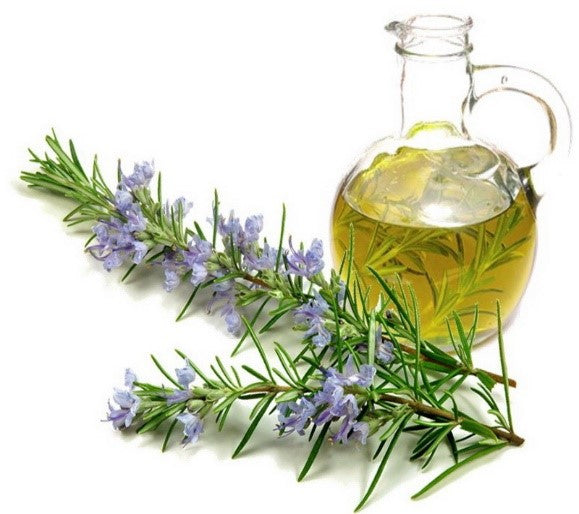 Rosemary - Infused Olive Oil