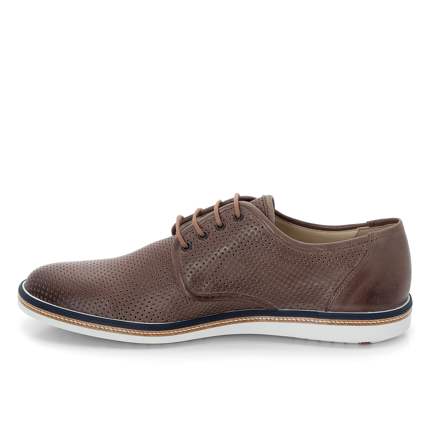 ALTO,SHOES,Lloyd, | GentRow.com