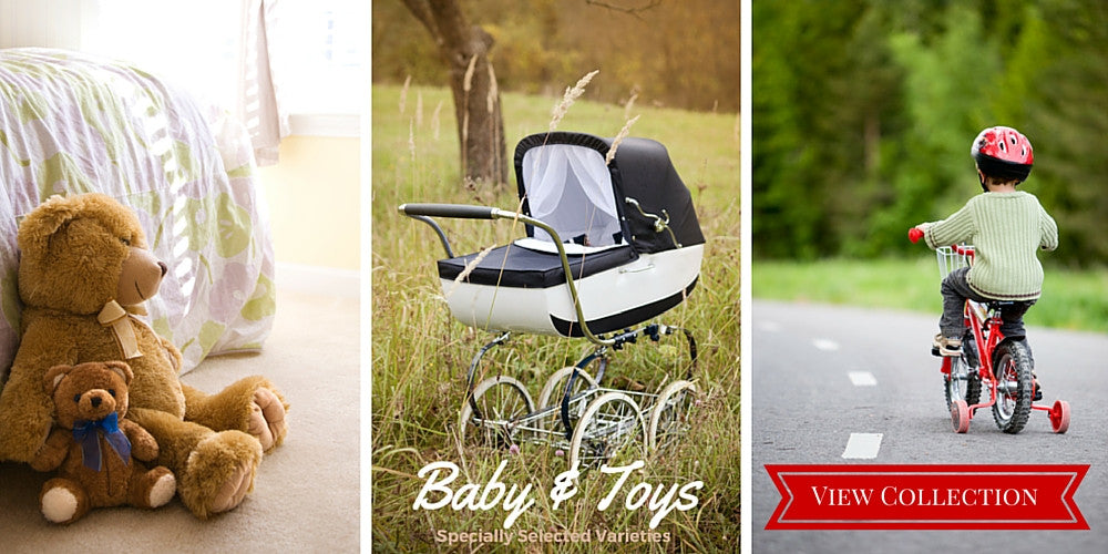 Specially Selected Baby Accessories & Toys Varieties
