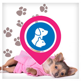 Buy Pet Care Supplies Products Online With the Best Price at Anbmart.com.au!