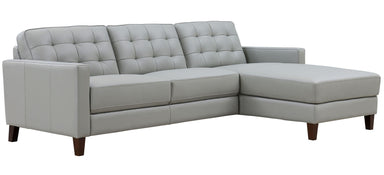 George 2 Piece Sectional - MJM Furniture
