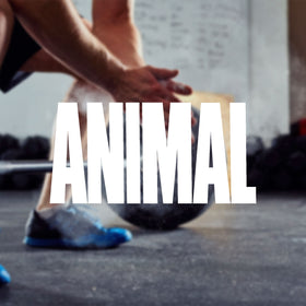 Buy Animal Pak Online at SpartanSuppz Australia